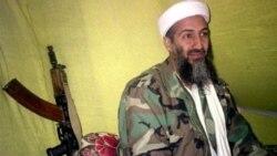 عکس العمل هالیوود به قتل اسامه بن لادن چه خواهد بود؟