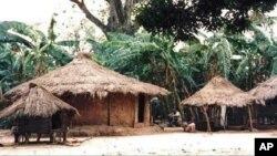 Dois mortos vários feridos em confrontos na Guiné-Bissau.