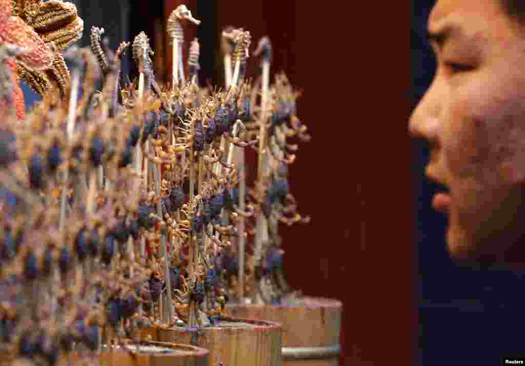 A man looks at sticks of deep-fried scorpions and seahorses at a food stall in Beijing, China.