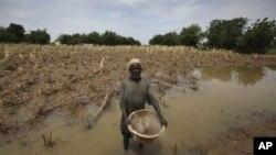 Un cultivateur du nord du Nigéria, victime des inondations de 2010