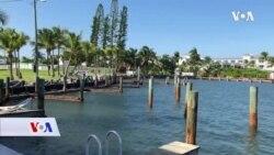 Florida: U bolnici za morske kornjače