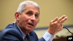 FILE - Dr. Anthony Fauci, director of the National Institute for Allergy and Infectious Diseases, speaks on Capitol Hill in Washington, July 31, 2020. (Kevin Dietsch/Pool via AP)