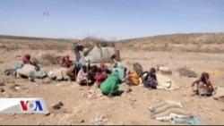 Afrika Kuraklıkla Boğuşuyor