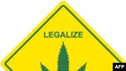 Споры о легализации наркотиков не стихают