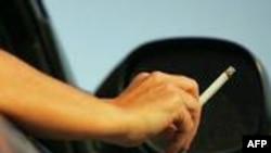 Sigara Dünyada Bir Numaralı Ölüm Nedeni