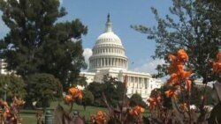 Washington Week: Focus on US Immigration Reform