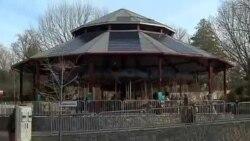看天下:华盛顿动物园的太阳能旋转木马