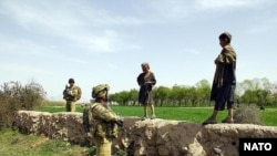 Tentara Australia di Afghanistan. (Foto: Dok)