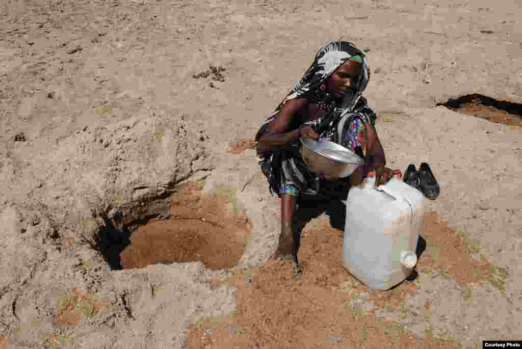 A woman collects water from a hole in the state of Blue Nile, northeastern Sudan. (Photo submitted by Anas Issa Ali to VOA Photo Contest)