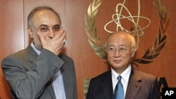 Director General of the International Atomic Energy Agency [IAEA] Yukiya Amano (R) from Japan, welcomes Iranian Foreign Minister Ali Akbar Salehi (L) prior to their talks at the International Center in Vienna, Austria, July 12, 2011 (file photo)