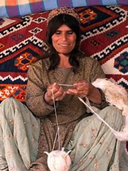 A carpet weaver in Fars, Iran