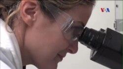 Các nhà nghiên cứu tìm cách giúp não bị tổn thương tự chữa lành