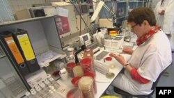 Chuyên viên phòng thí nghiệm Ðức nghiên cứu khuẩn E. coli