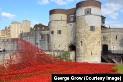 In 2014, artists created a memorial with poppies at the Tower of London to mark the anniversary of World War I.