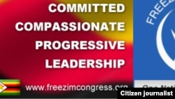 Freezim