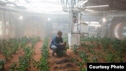 "Scene from ""The Martian"" (Photo: Courtesy 20th Century Fox)"