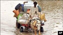 صوبہ سندھ میں بارش سے خوفناک تباہی، درجنوں دیہات بہہ گئے