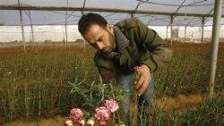 اسراييل محدوديتهای صادراتی غزه را کاهش می دهد