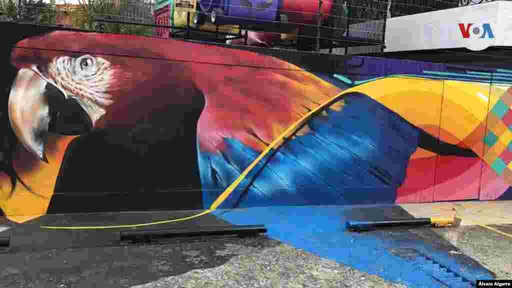 En este mural, Salazar plasmó uno de los iconos de Caracas: las guacamayas.