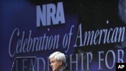 Former speaker of the House of Representatives Newt Gingrich addresses the National Rifle Association's 140th annual meeting, April 29, 2011 in Pittsburgh.