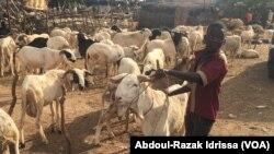 Reportage d'Abdoul-Razak Idrissa, correspondant à Niamey pour VOA Afrique