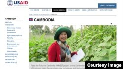 Screenshot of USAID website.