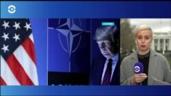 В Белом доме встречаются глава НАТО и президент США