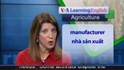 Anh ngữ đặc biệt: Antibiotics Livestock Rule (VOA-Ag Rep)
