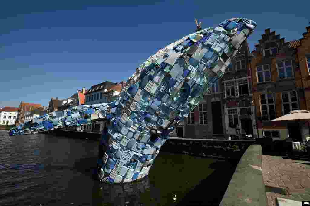 A 12-meter installation depicting a whale, made up of five tons of plastic waste pulled out of the Pacific Ocean, is displayed in Brugges, Belgium, July 14, 2018 for the 2018 Bruges Triennial.