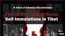 Fire in the Land of Snow: Self-Immolations in Tibet