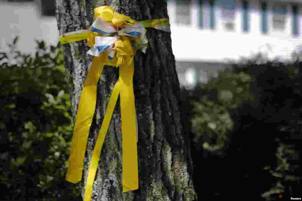 Žuta traka na drvetu ispred porodične kuće Jamesa Foleya u Rochesteru. 20. august 2014.