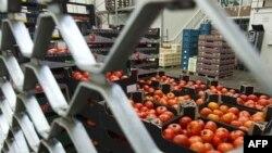 Gotovo svi Evropljani prestali su da kupuju voće i povrće iz Španije