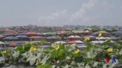 ক্যাম্পে সবুজায়ন রোহিঙ্গাদের দেশে ফেরার আগ্রহ বাড়িয়েছে