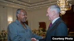 美国防长马蒂斯2017年4月23日会见吉布提总统盖莱 (美国国防部照片)