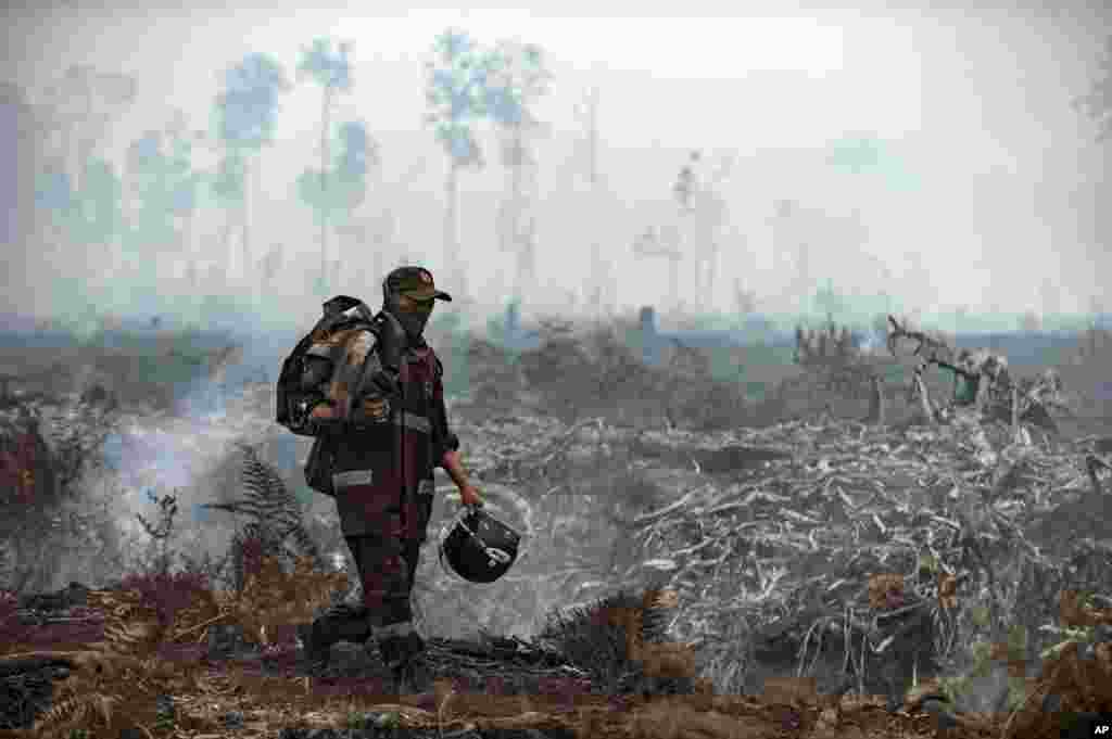 A fire fighter walks on a field as smoke billows from burnt trees at Sebangau National Park, Central Kalimantan, Indonesia. The smoke from the fires has blanketed parts of Indonesia, Singapore, Malaysia and southern Thailand in a noxious haze.