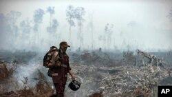 Seorang pemadam kebakaran berjalan di atas lapangan ketika asap mengepul dari pohon-pohon yang terbakar di Taman Nasional Sebangau, Kalimantan Tengah, Indonesia, 19 September 2019. (Foto: AP)
