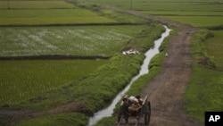 [신년기획] 3. 2013년 북한- '경제 개선 기대 어려워''