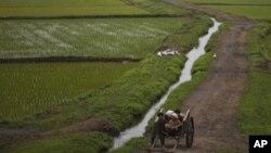 북한 평양 외곽의 농촌 풍경. (자료사진)