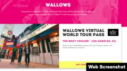 Виртуелни концерти во време на Ковид-19
