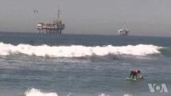 Compétition Surf City Surf Dog à Huntington Beach (vidéo)
