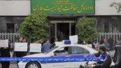 اعتراض به سگ کشی های اخیر در شیراز