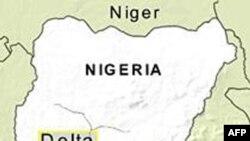جنبش آزادیبخش دلتای نیجر اعلام آتش بس کرد