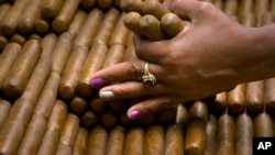 FILE - A sorter selects cigars at the H. Upmann cigar factory in Havana, Cuba, March 2, 2017.