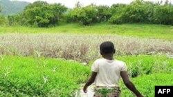 """""""Well Done"""" təşkilatı ucqar bölgələrə təmiz suyun çatdırılması ilə məşğuldu (video)"""