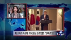 "VOA连线:美日韩外长会晤 深化国际合作对抗""伊斯兰国"""