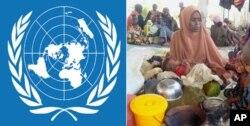منع فعالیت موسسات خیریه در سومالیا توسط گروه الشباب