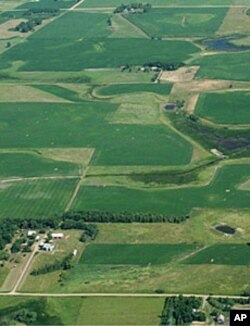 The EcoSun Prairie Farm – seen here before being restored with native grasses – was an active corn and soybean farm for more than a century