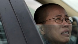 Liu Xia, wife of imprisoned Nobel Peace Prize winner Liu Xiaobo, cries in a car outside Huairou Detention Center where her brother Liu Hui has been jailed in Huairou district, on the outskirts of Beijing, June 9, 2013.