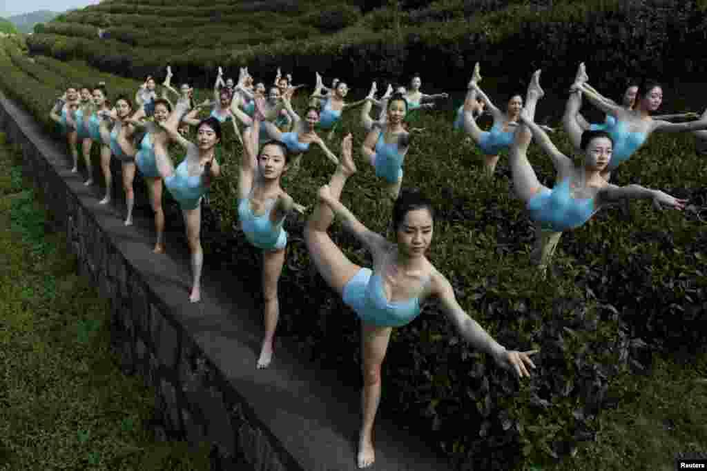 ក្រុមកុមារីសម្តែងក្បាច់លំហាត់ប្រាណយោហ្គានៅឯចម្ការតែមួយ ជាផ្នែកមួយនៃកម្មវិធីទូរទស្សន៍ ដែលជ្រើសរើសក្រុមសម្តែងស្រីនៅក្រុង Hangzhou ខេត្ត Zhejiang ប្រទេសចិន កាលពីថ្ងៃទី១៧ ខែមេសា ឆ្នាំ២០១៦។