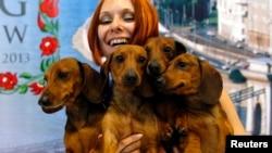 Seorang perempuan bersama anjing-anjing Daschund miliknya yang menang kompetisi dunia di Budapest. (Foto: Dok)